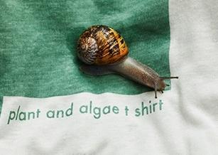 12週內消失殆盡的T恤!Vollebak設計全天然可分解衣 埋入土中轉化成肥料