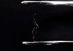 芬蘭大學研發新型塑膠替代品 靠蜘蛛絲黏合木材纖維