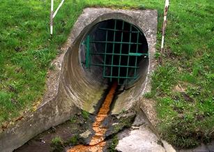 研究人員利用光線去除廢水中的有毒染料