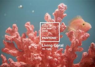 Pantone 2019年度代表色!「活珊瑚橘Living Coral」流行色展活力與自然生機
